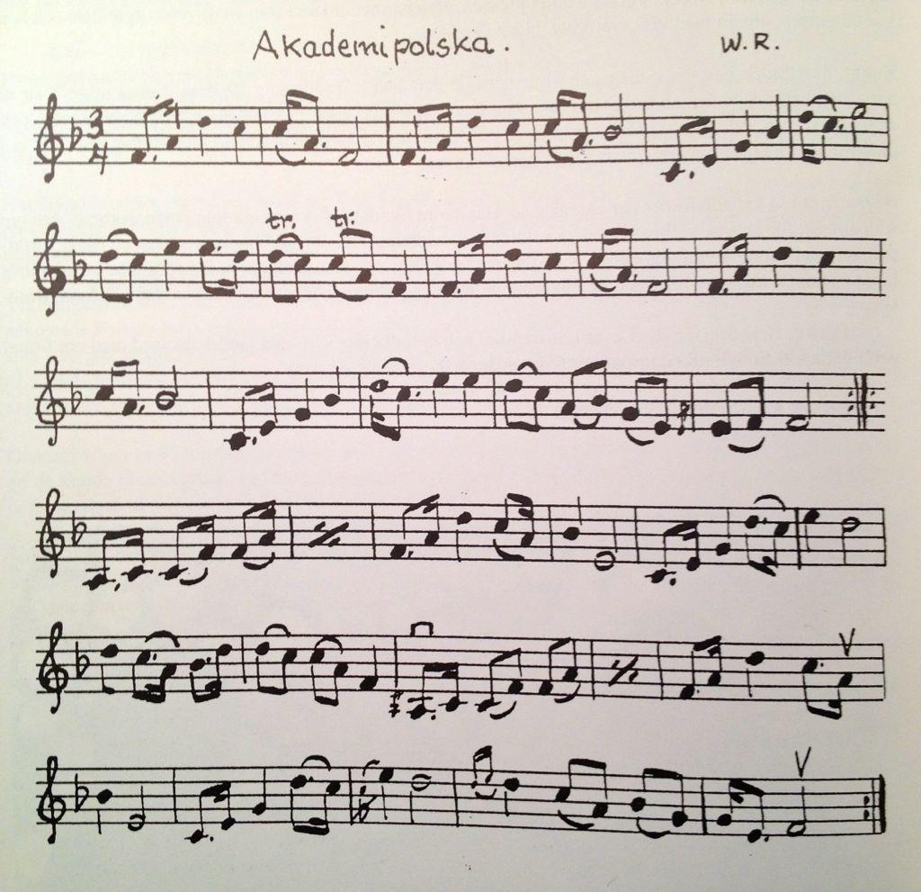 Akademipolska